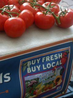 Togio Farms Tomatoes