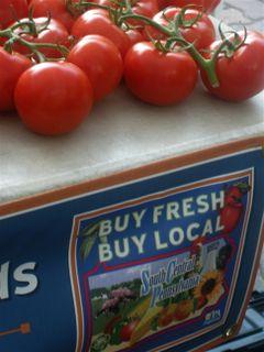 Togio Farms Tomatoes