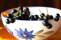 Huckleberries 500